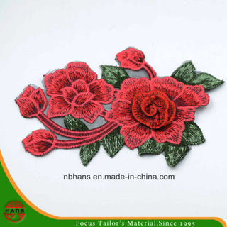 2017 New Design Embroidery Lace (HANS-CH10)